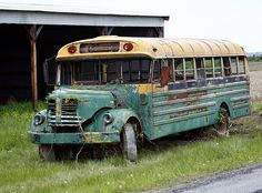 Old School Buses Don't Die....They Just Get Painted and Sit By the Road