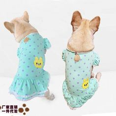 undefined Small Dog Clothes Patterns, Pet Store, Wholesale Clothing, Small Dogs, New Product, Pet Supplies, Dinosaur Stuffed Animal, Chinese, Embroidery
