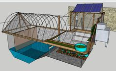 """agritecture: """" Via Modern Farmer: """" Instead of water wings and inner tubes, Dennis and Danielle McClung's backyard pool in Mesa, Arizona, is filled with tomato plants, grape vines and wheat. Aquaponics System, Aquaponics Diy, Hydroponics, Aquaponics Greenhouse, Hydroponic Gardening, Cool Things To Make, Things To Come, Large Greenhouse, Modern Farmer"""