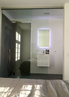 Bedroom and bathroom in one room with a glass sliding door.