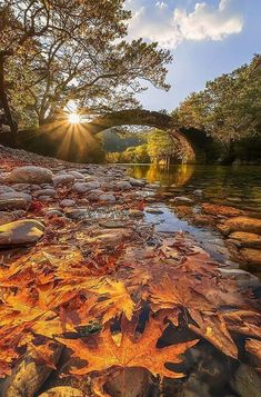 Fall in Kleidonia, Ioannina, Greece by Alexandros Malapetsas Fall Images, Fall Pictures, Nature Pictures, Greece Photography, Fall Nature Photography, Autumn Scenes, Destination Voyage, Photos Voyages, Belleza Natural