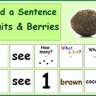 Build a Sentence- Fruits & Berries, Autism Activity