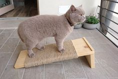 Cat Scratcher Large Cat Scratching post made of by PinkBau on Etsy