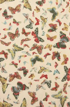 Grey's Fabrics on Etsy // Alexander Henry Eton Butterfly Cotton Lawn Fabric in Ivory //$15