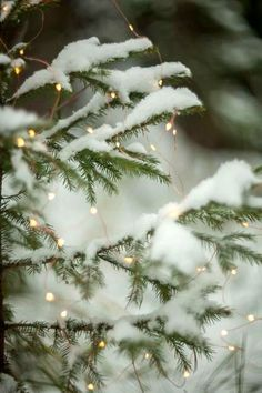 New Ideas For Christmas Wallpaper Backgrounds Winter Wonderland Xmas Christmas Mood, Noel Christmas, Merry Little Christmas, White Christmas Snow, Christmas Tumblr, Christmas Houses, Christmas Scenes, Christmas Pictures, Christmas Wishes