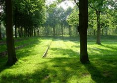 Levelled grass terraces in an orchard by Wirtz International Landscape Architects