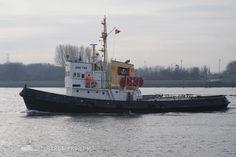 Working Tug Boat