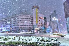 Tokyo bajo la nieve