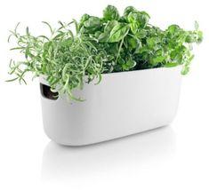 Trouva: Self Watering Herb Organiser White