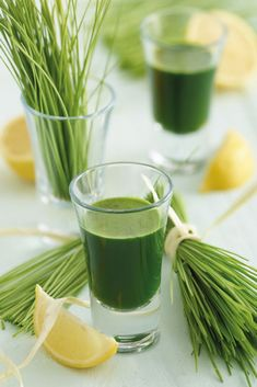 Get a dose of fresh goodness with this Wheatgrass Shot recipe using the Kenwood PureJuice Smoothie Packs, Smoothie Blender, Juice Smoothie, Smoothies, Juice Drinks, Detox Drinks, Detox Juice Recipes, Green Juice Recipes, Smoothie Recipes