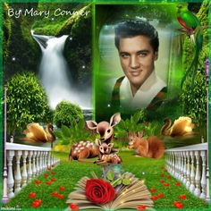 Elvis with Nature