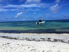 Diani Beach, Kenya, Waves, Outdoor, Outdoors, Ocean Waves, Outdoor Games, Outdoor Life, Beach Waves