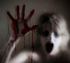 Explora el miedo en un bosque / Foto: Explorando el Miedo | Facebook