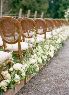 A gorgeous champagne and ivory old world charm outdoor wedding with an elegant tented reception space. # Outdoor Weddings isle Champagne and Ivory Old World Charm Wedding Inspiration Wedding Ceremony Ideas, Wedding Events, Wedding Aisles, Wedding Aisle Decorations, Wedding Backdrops, Wedding Reception, Wedding Ceremonies, Ceremony Backdrop, Decor Wedding