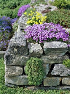 Garden walls, paths and fences Garten - Trockenmauer - Naturstein - rock wall How To Choose Outdoor Rockery Garden, Dry Garden, Terraced Garden, Garden Club, Vegetable Garden, Rock Wall Gardens, Dry Stone, Most Beautiful Gardens, Landscaping With Rocks