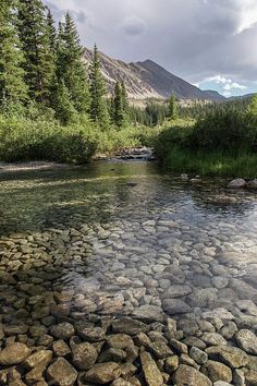 Mountain River - Sawatch Range, Colorado