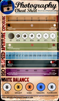 Photography Cheat Sheet #infographic - I like the white balance diagram on this one