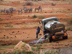 Filling a waterhole in Tsavo West.