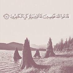 فٱدعوا الله مخلصين له الدين و لو كره الكافرون .  #آيات #ايات #قرآن #إسلام #الله #دعاء