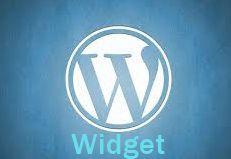 How to create custom widget in WordPress | Blogonmind