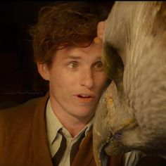 """You see, he's the real reason I came to America. To bring Frank home."" - gonna cry now cause Newt/Eddie is so nice to his creatures Harry Potter Films, Harry Potter Universal, Harry Potter World, Newton Scamander, Ron And Harry, Yer A Wizard Harry, Eddie Redmayne, Fantastic Beasts And Where, Celebrity Crush"