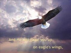 But they that wait upon the Lord shall renew their strength; they shall mount up with wings as eagles; they shall run and not be weary; and they shall walk and not faint. The Eagles, Wings Like Eagles, Bald Eagles, Eagle Wallpaper, Animal Wallpaper, Wallpaper Wallpapers, Funeral Songs, Eagle Wings, Jesus