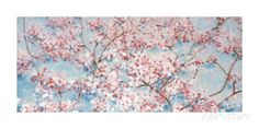 Full Blossom Poster by Nicola Acaster - at AllPosters.com.au