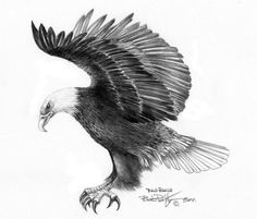 """Eagle attacking"""" greeting card by Bob Patterson. Description from fineartamerica.com. I searched for this on bing.com/images"""