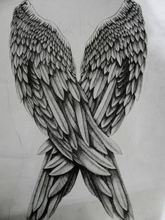 wings, drawing, and angel