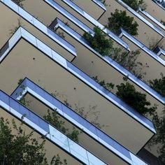 bosco verticale 7