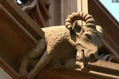 Ram gargoyle on Cathedral. Strasbourg, France. Although I have been finding these random animal gargoyles interesting I feel that the more demon like fit my brief better.