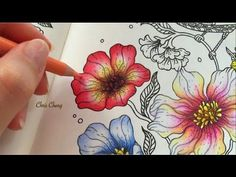 Spring Flower   Coloring with Colored Pencils - YouTube