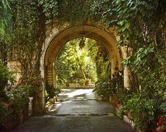 Original Photograph - Magical Garden
