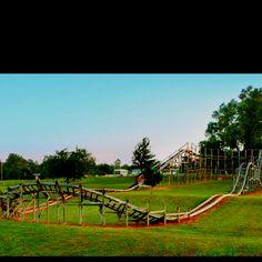 A real backyard roller coaster