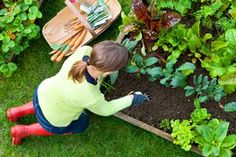 Garden Fitness Tips for Women I 7 Best Strength Exercises for Gardeners - ParentMap