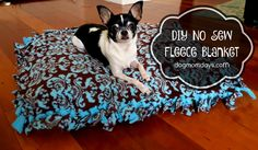 This simple DIY no sew fleece blanket is great for pets and humans! They make great gifts and donations to your local animal shelter!