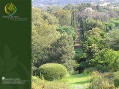 Le Domaine du Rayol, « territoire de nature et d'esprit » (Gilles Clément)