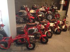 Honda mini bikes. Z50m, cz100, 30th anniversary, 40th anniversary...