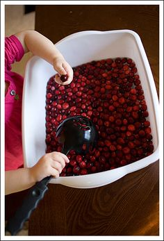 cranberry bog sensory table