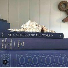 "62 Likes, 4 Comments - The Brass Palm (@thebrasspalm) on Instagram: ""I have been enjoying helping Lisa of @aquabungalow source some beautiful books for her collection.…"""
