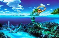 Bir Deniz Kızı Aşık Olur Mu Hiç?