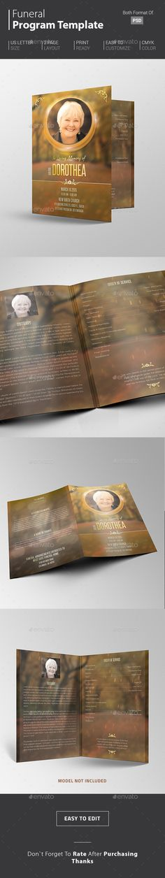Education Bifold / Halffold Brochure 6 | Cleanses, Modern and Education