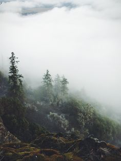 the fog rolls in Der Steppenwolf, Beautiful World, Beautiful Places, Belleza Natural, Adventure Is Out There, The Great Outdoors, Wonders Of The World, Mother Nature, Nature Photography