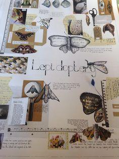 Moth boards