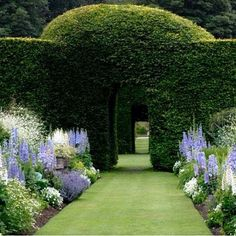 gorgeous blue and white garden