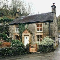 Vine Covered Cottage