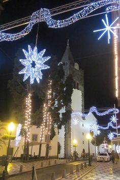 Sé Catedral Christmas Tree, Holiday Decor, Home Decor, Teal Christmas Tree, Decoration Home, Room Decor, Xmas Trees, Xmas Tree, Christmas Trees