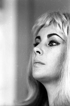 Elizabeth Taylor, 1963. Photo: Michael Ochs. Eyebrows. Eye Makeup.