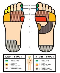 Reflexology for stuffy nose, sore throat, headache, cough, shoulder ache, heartache, lower backache, hangover, stomachache