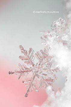Snowflake Close-up 5 wallpaper snowflakes Snowflake Wallpaper, Christmas Phone Wallpaper, Holiday Wallpaper, Winter Gif, Hello Winter, Winter Scenes, Christmas Mood, Pink Christmas, Xmas